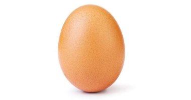 هكذا حصدت  بيضة  30 مليون  لايك  على انستجرام